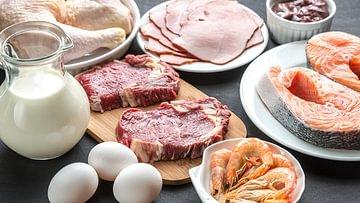 protein (2)