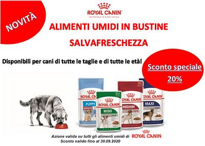 20% sull'umido per cani di ROYAL CANIN